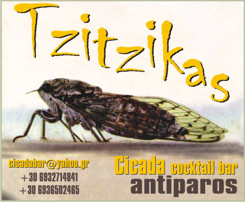 tzitzikas bar